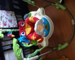 Fisher Price Baby Gear K7198 Rainforest Jumperoo